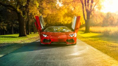 Lamborghini Doors Open Wallpaper 59989