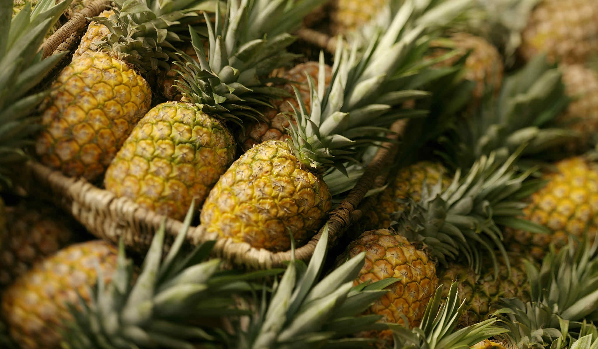 pineapple food desktop wallpaper 61705