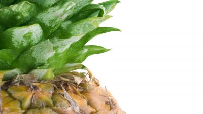 Pineapple Up Close Wallpaper 61702