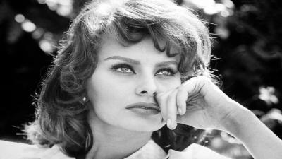 Sophia Loren Actress Wallpaper 60312