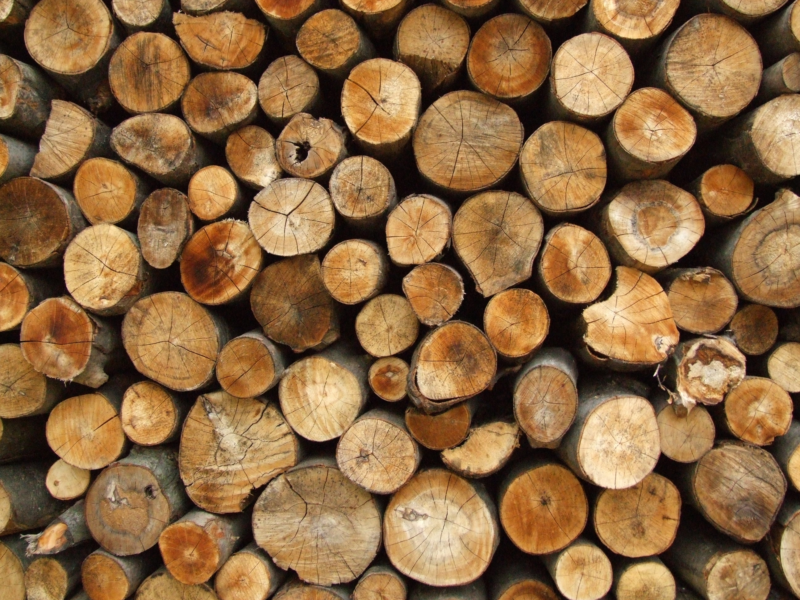 firewood wallpaper photos 59174