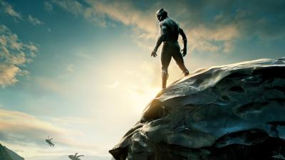 Black Panther Movie Widescreen HD Wallpaper 62053