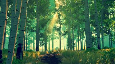 Firewatch Forest Wallpaper 59157