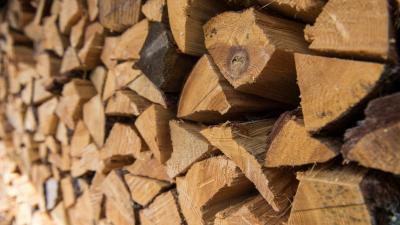 Firewood Desktop HD Wallpaper 59175