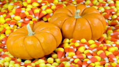 Mini Pumpkins Widescreen Wallpaper 61983