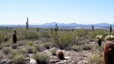 Scottsdale Arizona Landscape Wallpaper 61821