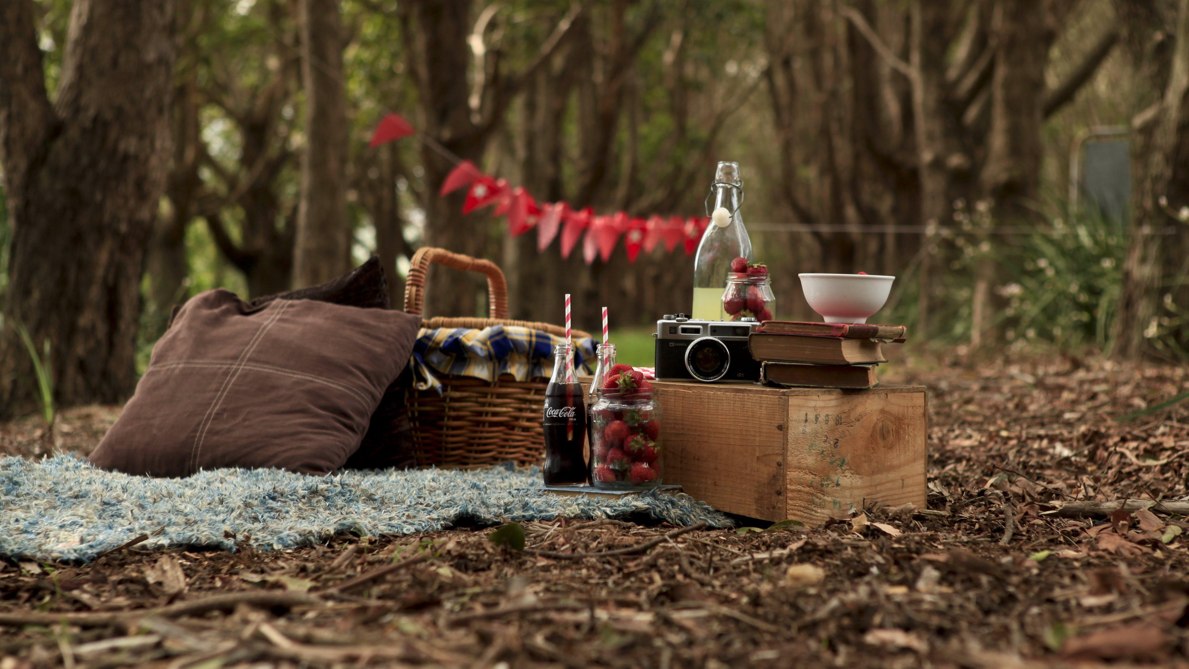 picnic widescreen hd wallpaper 60754