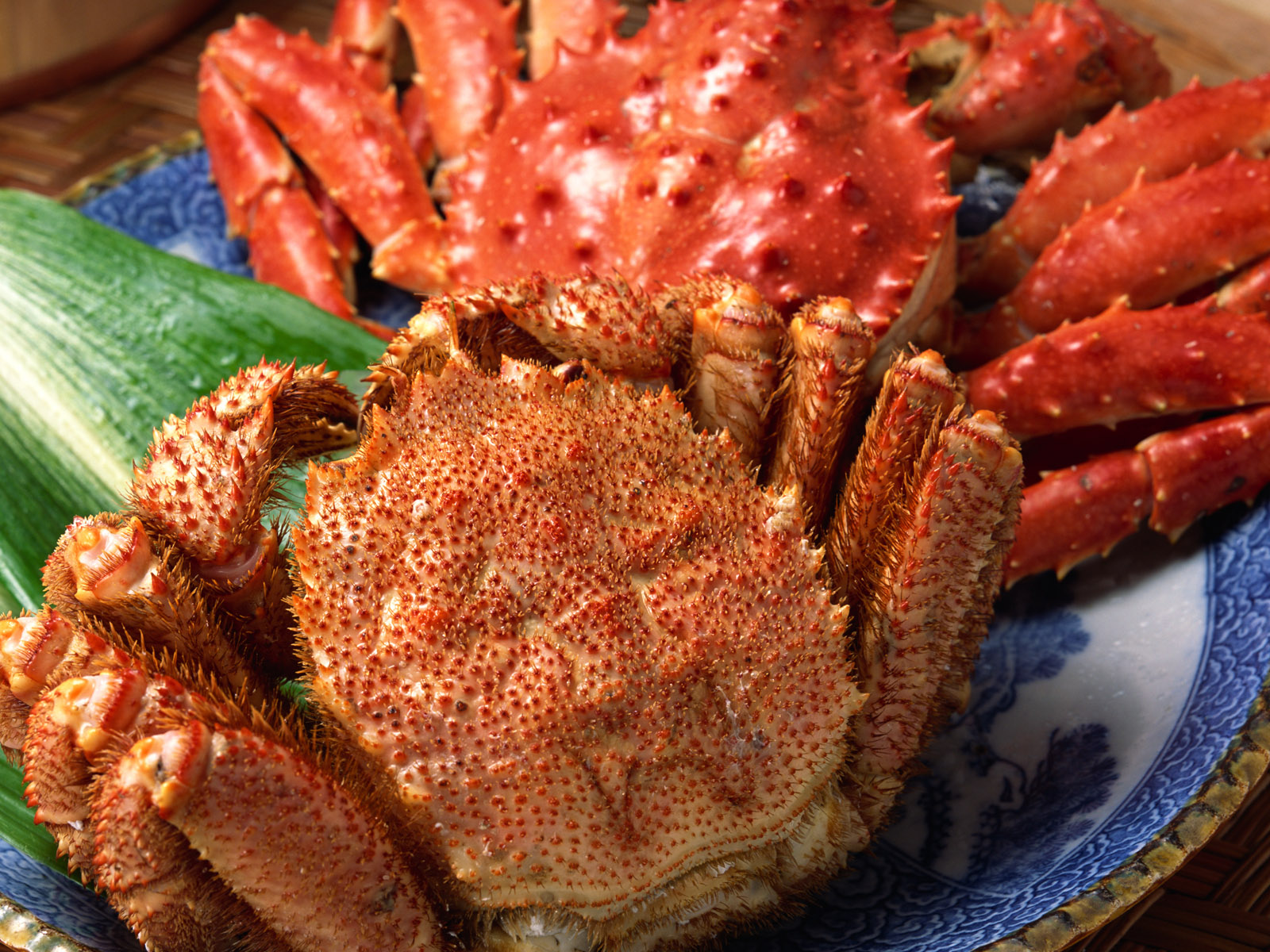 seafood computer wallpaper pictures 60488