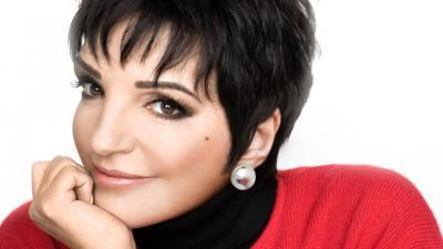 Liza Minnelli Face Wallpaper 60929