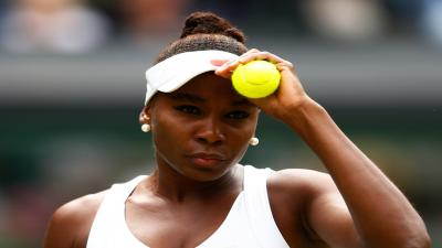 Venus Williams Athlete Wallpaper 59953