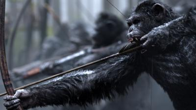 War for the Planet of the Apes Widescreen Wallpaper 61311