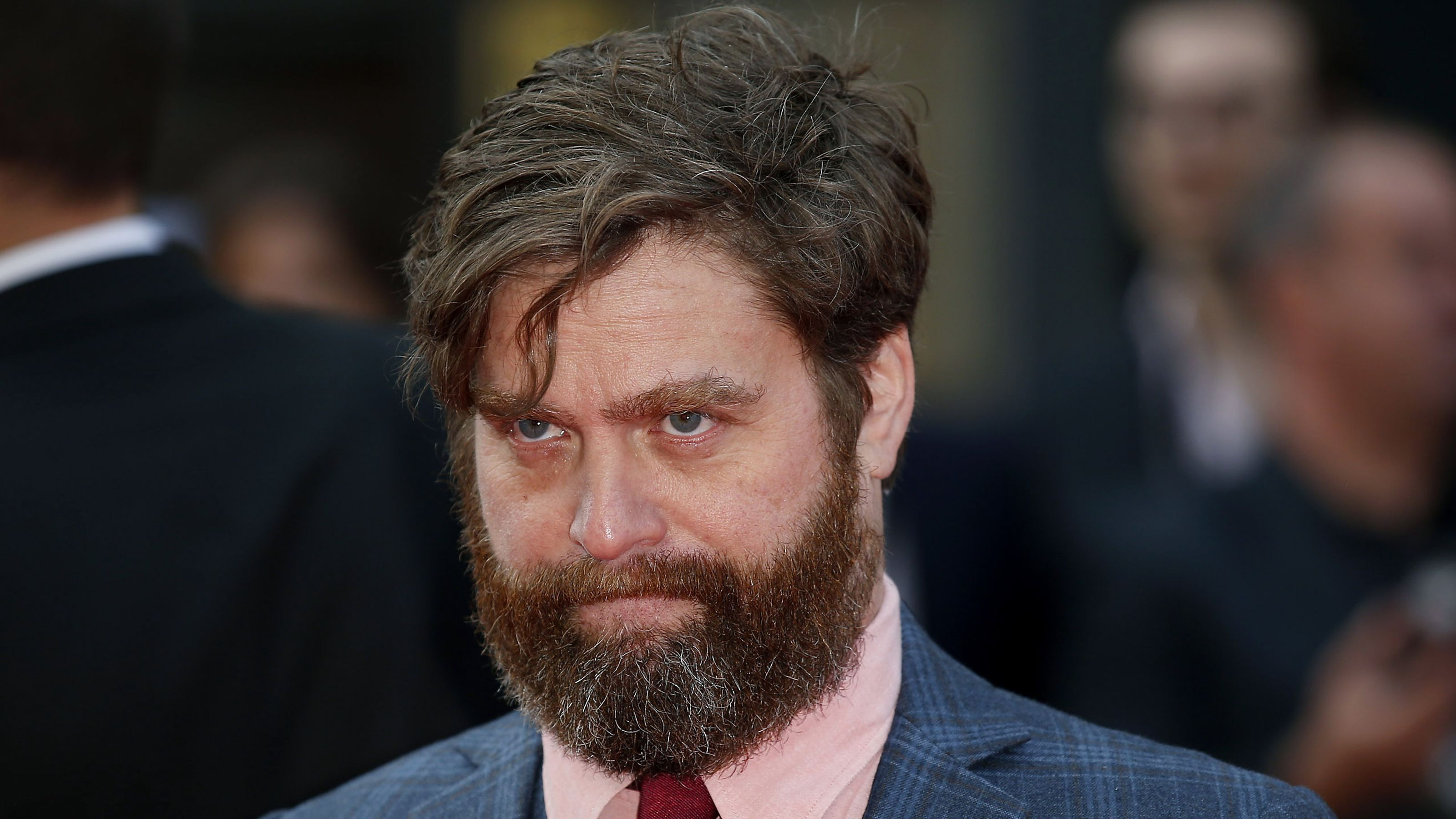 zach galifianakis actor wallpaper 59418