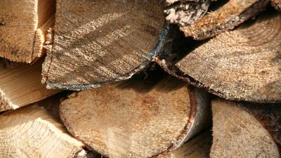 Firewood Logs Wallpaper Pictures 62179