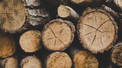 Firewood Up Close Widescreen HD Wallpaper 62177