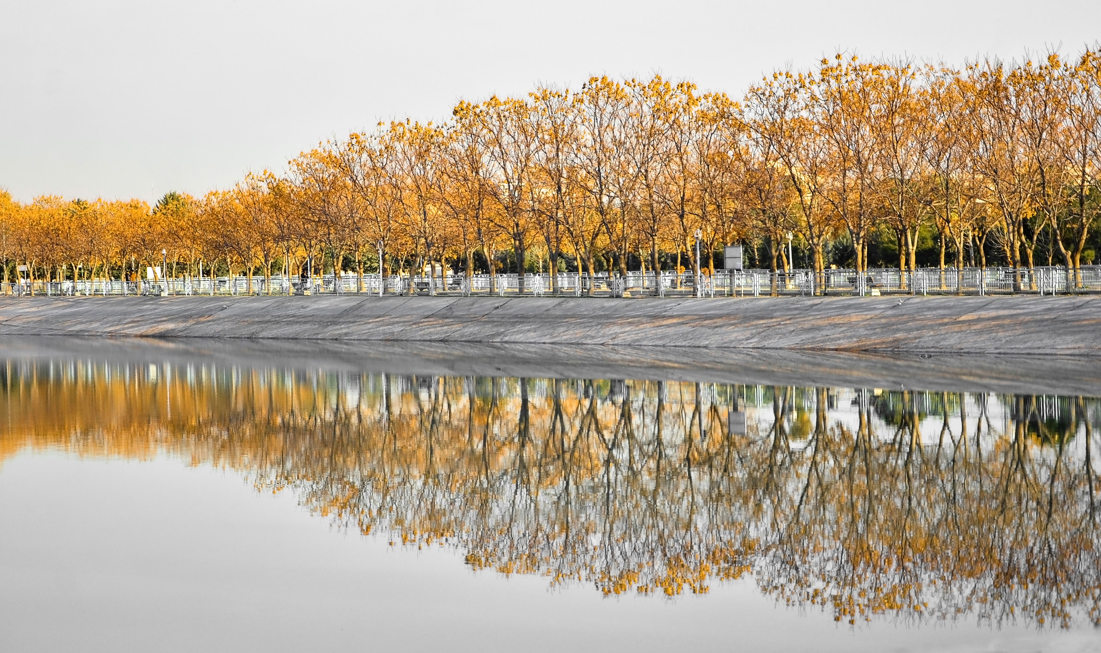 fall trees reflection wide wallpaper 61206