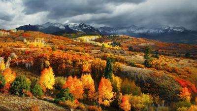 Colorful Colorado Landscape Wallpaper 61845