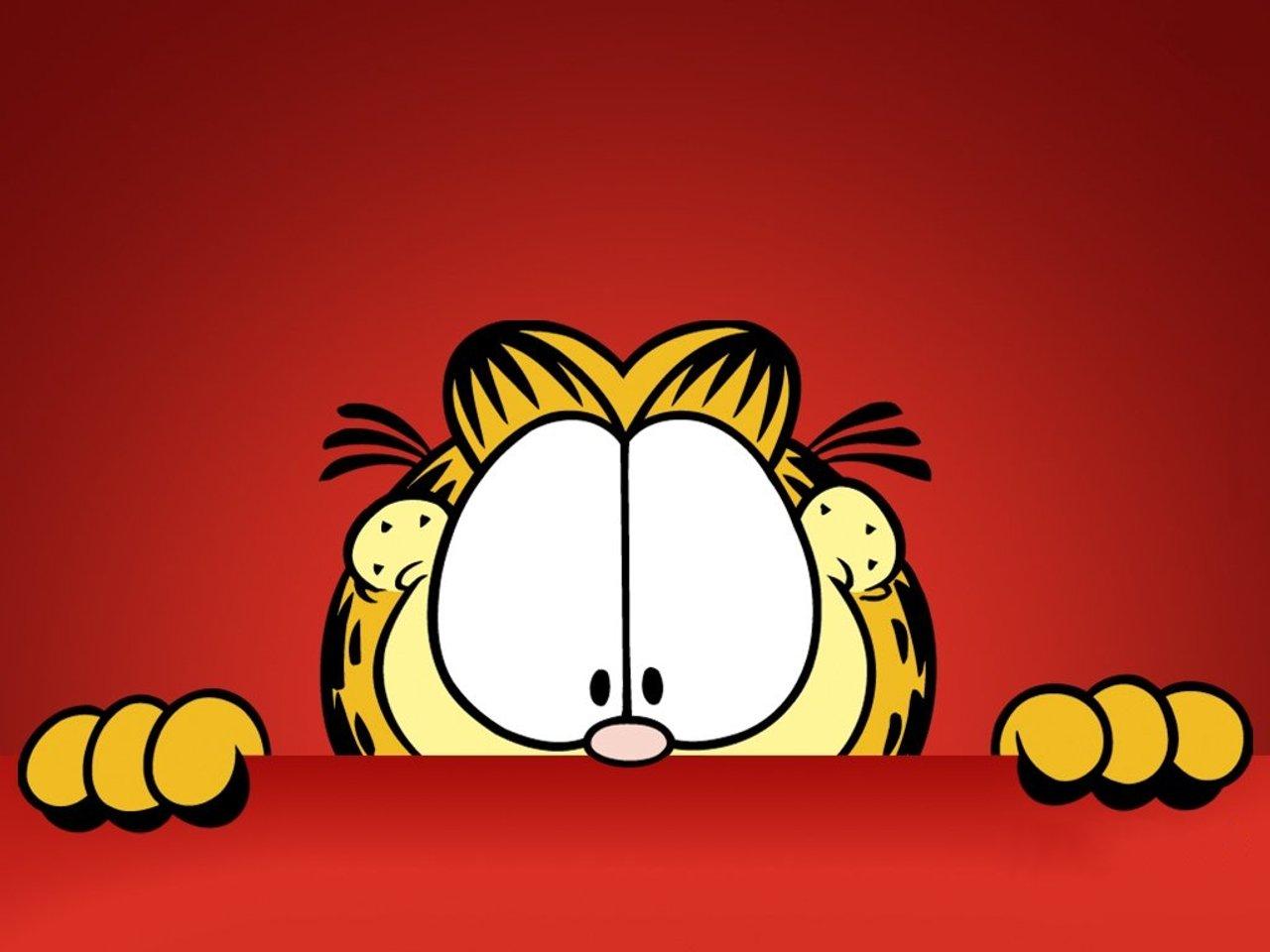 garfield cat wallpaper 61369