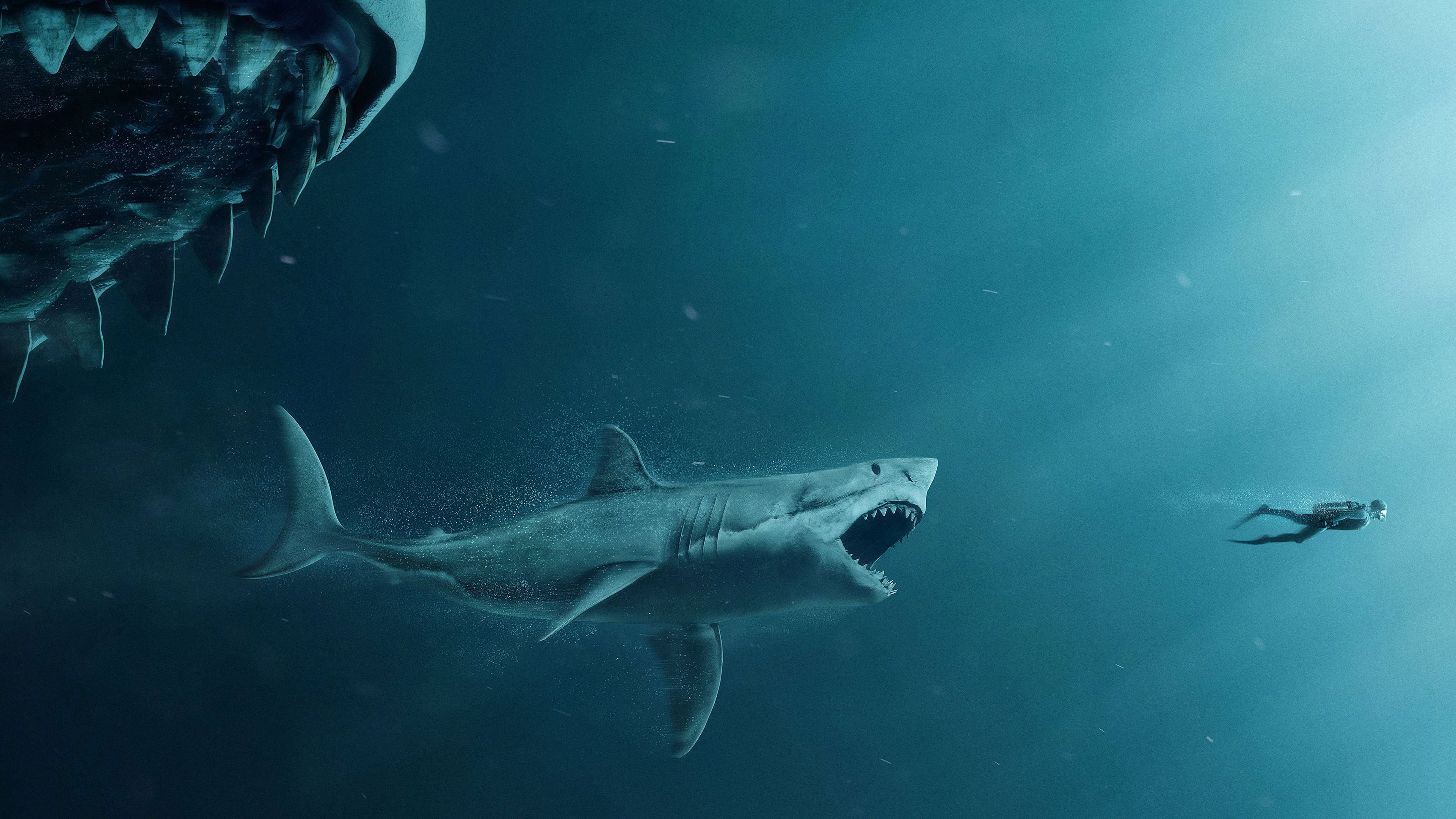 4k the meg movie wallpaper 64769