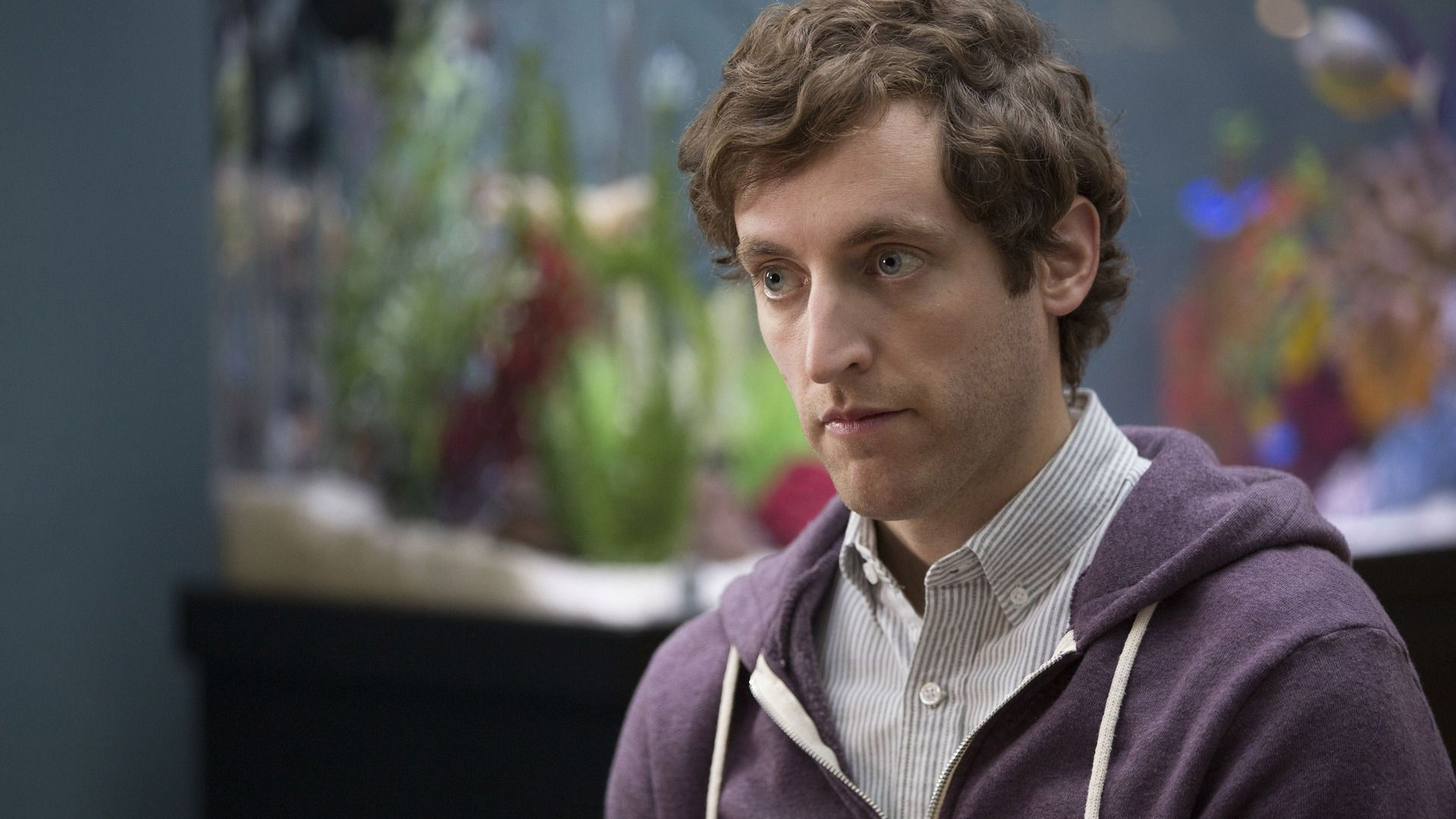 thomas middleditch actor wallpaper 63991