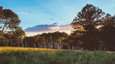 Flagstaff Arizona Nature Sunset Wallpaper 65081
