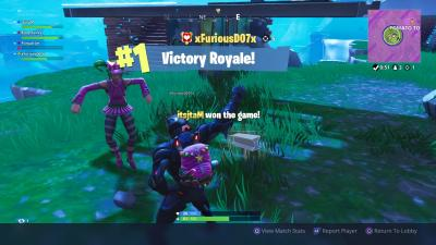 Fortnite Victory HD Wallpaper Background 64476