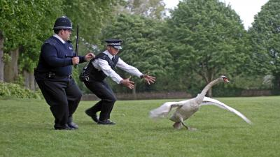 Hot Fuzz Movie Wide Wallpaper 64003
