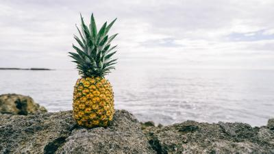 Pineapple HD Desktop Wallpaper 66331