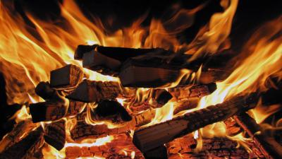 Firewood Widescreen Pictures Wallpaper 64994