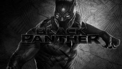 Black Panther Movie HD Wallpaper 62790