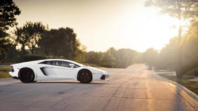 White Lamborghini Aventador Wallpaper 66279