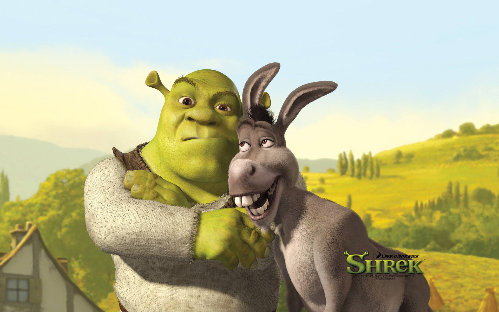 Funny Shrek And Donkey Desktop Wallpaper 64269 1920x1200px