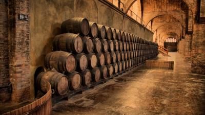 Wine Barrels Photography Wallpaper 62580