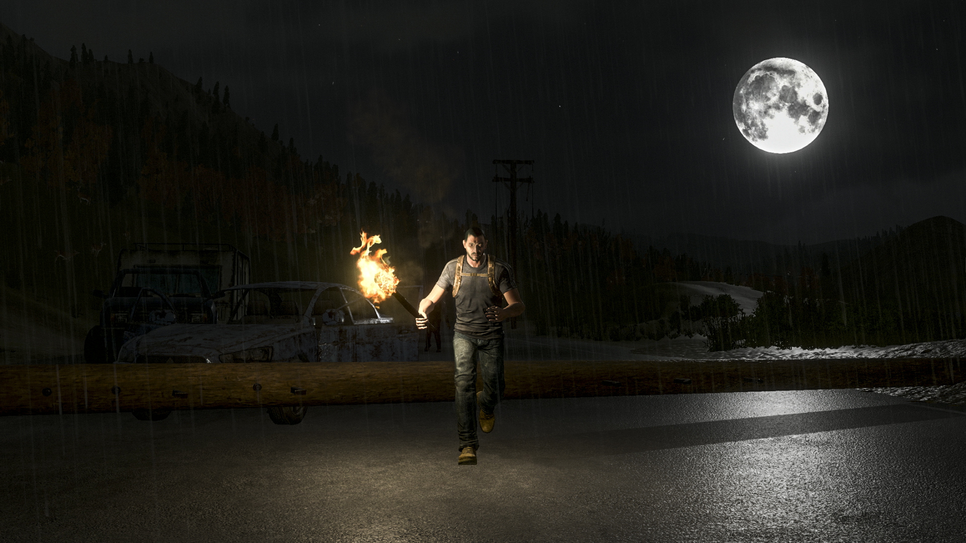 h1z1 torch wallpaper 64166