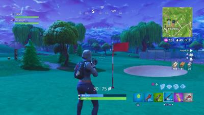 Fortnite Lazy Links Flagpole Wallpaper Background 64353