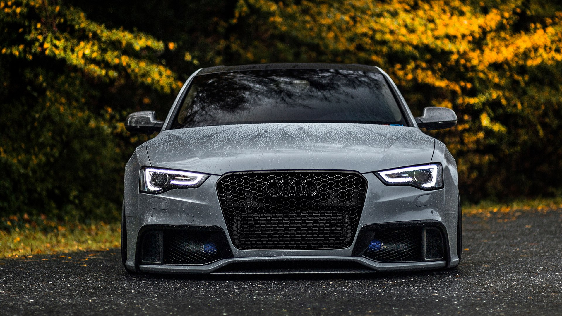 lowered audi rs5 desktop wallpaper 63043
