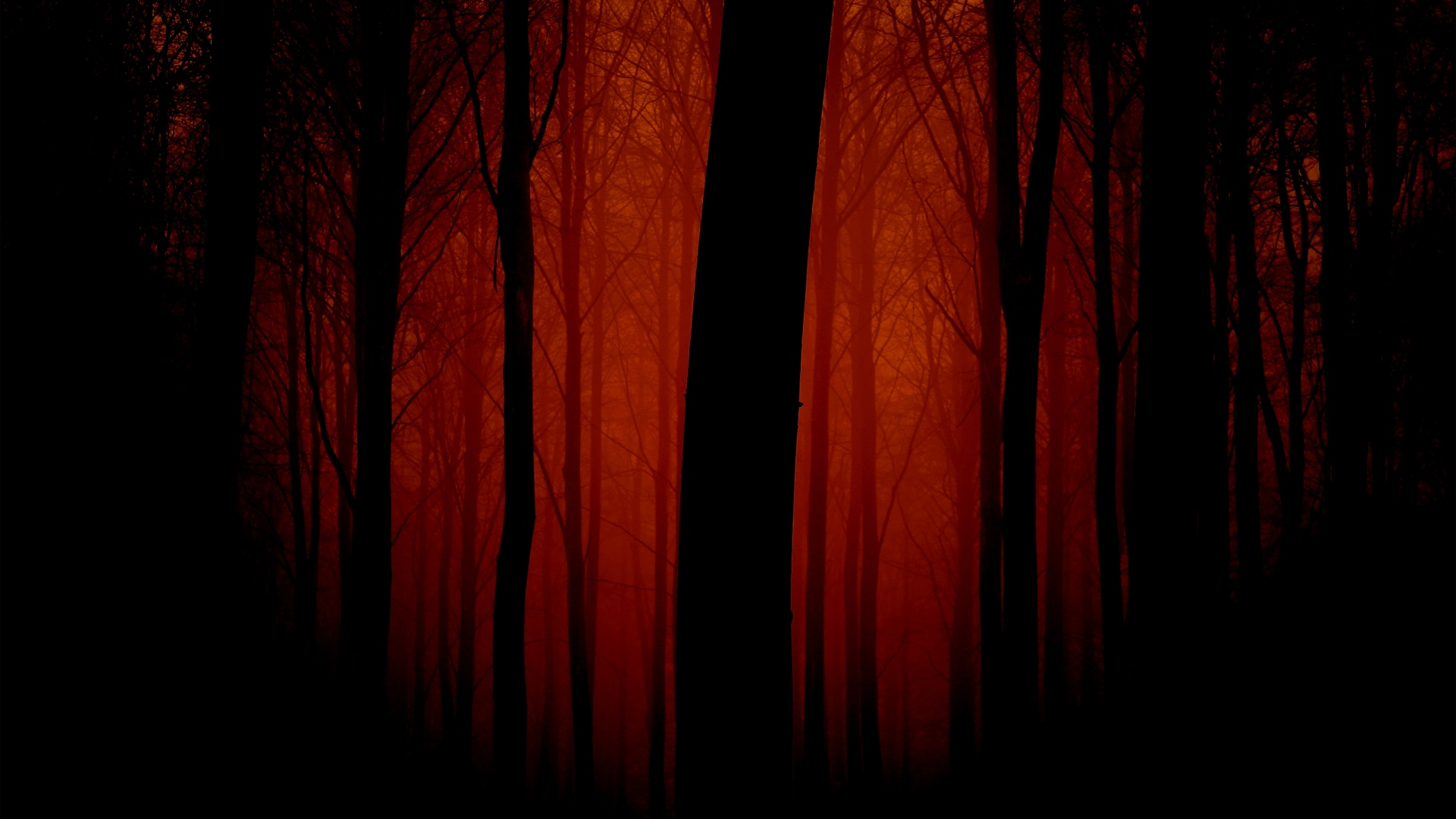 red scary forest digital art wallpaper background 64315 66484 hd wallpapers
