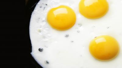 Fried Eggs Widescreen Wallpaper 63314