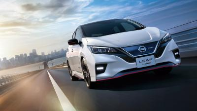 Nissan Leaf Background HD Wallpaper 65971