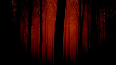 Red Scary Forest Digital Art Wallpaper Background 64315
