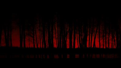 Scary Dark Forest Desktop Wallpaper 64316