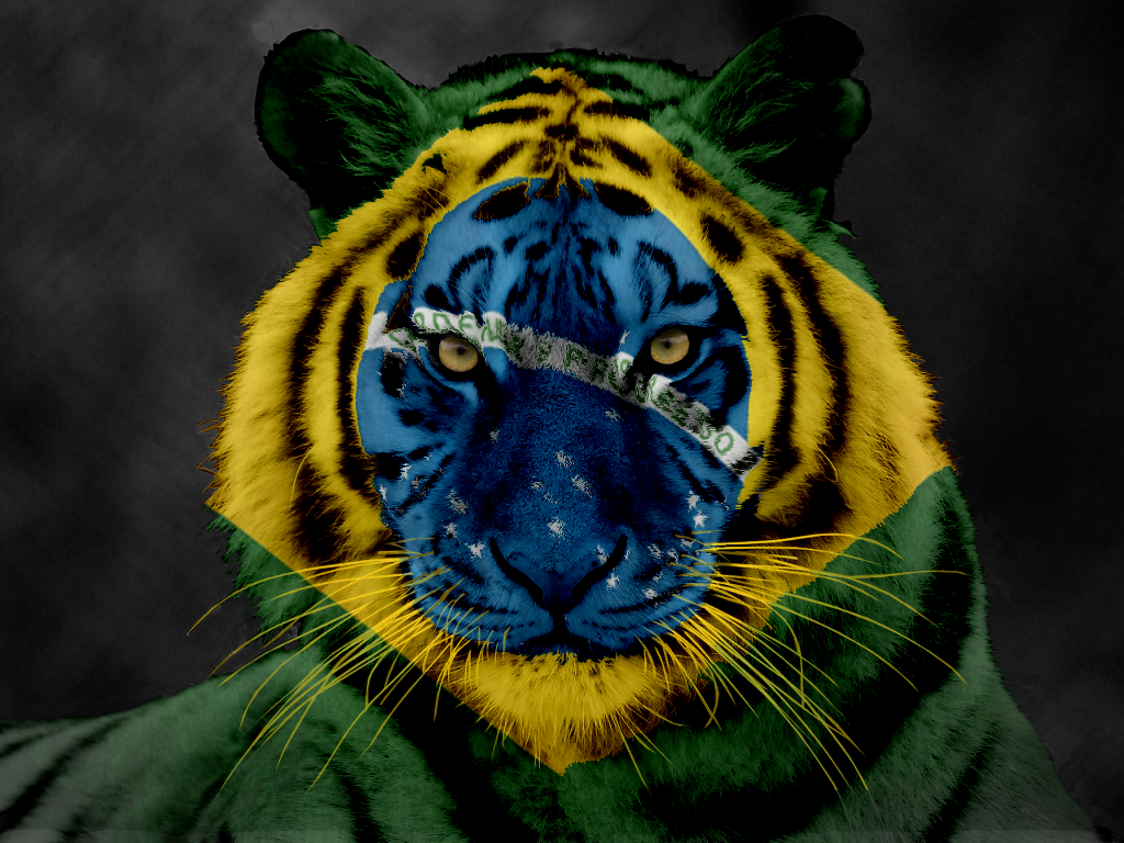 brazilian tiger wallpaper 62999