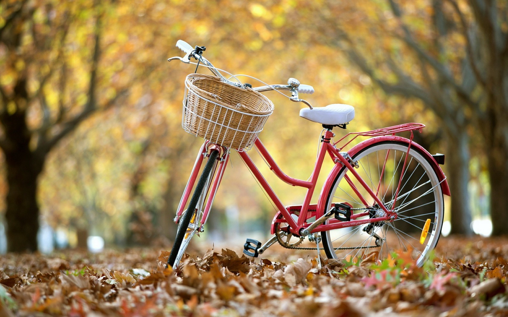 red bicycle computer wallpaper 66362
