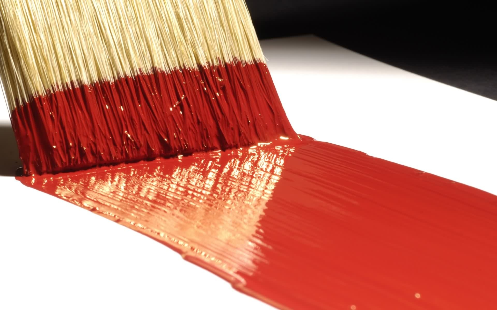 paint brush close up desktop wallpaper 63186