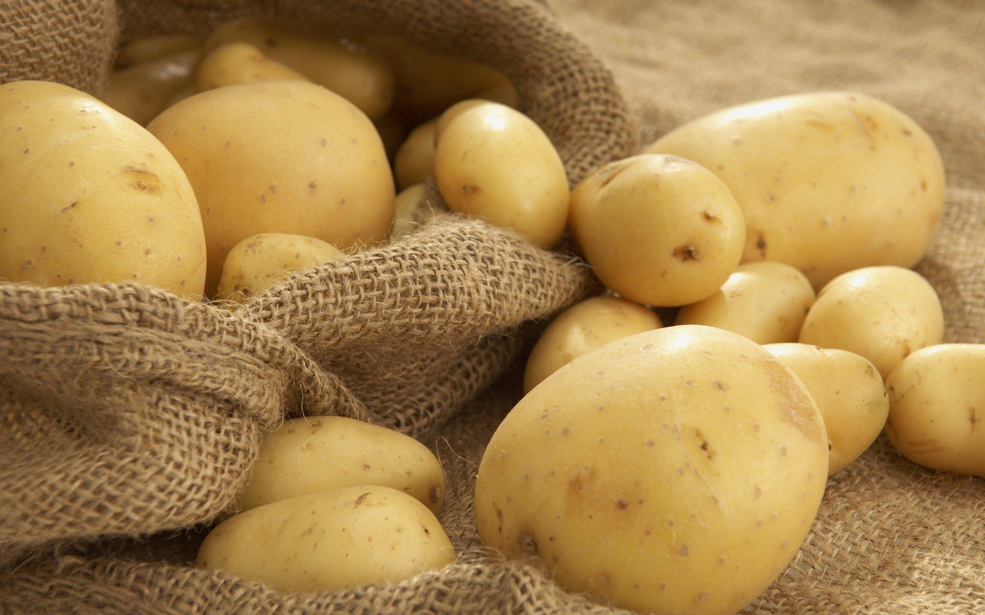 potatoes food wallpaper 63188