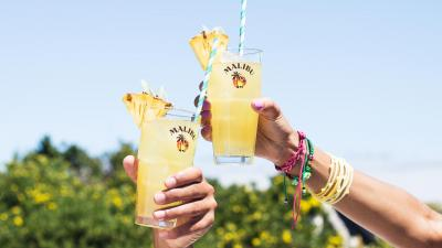 Malibu Rum Drinks HD Wallpaper 66408