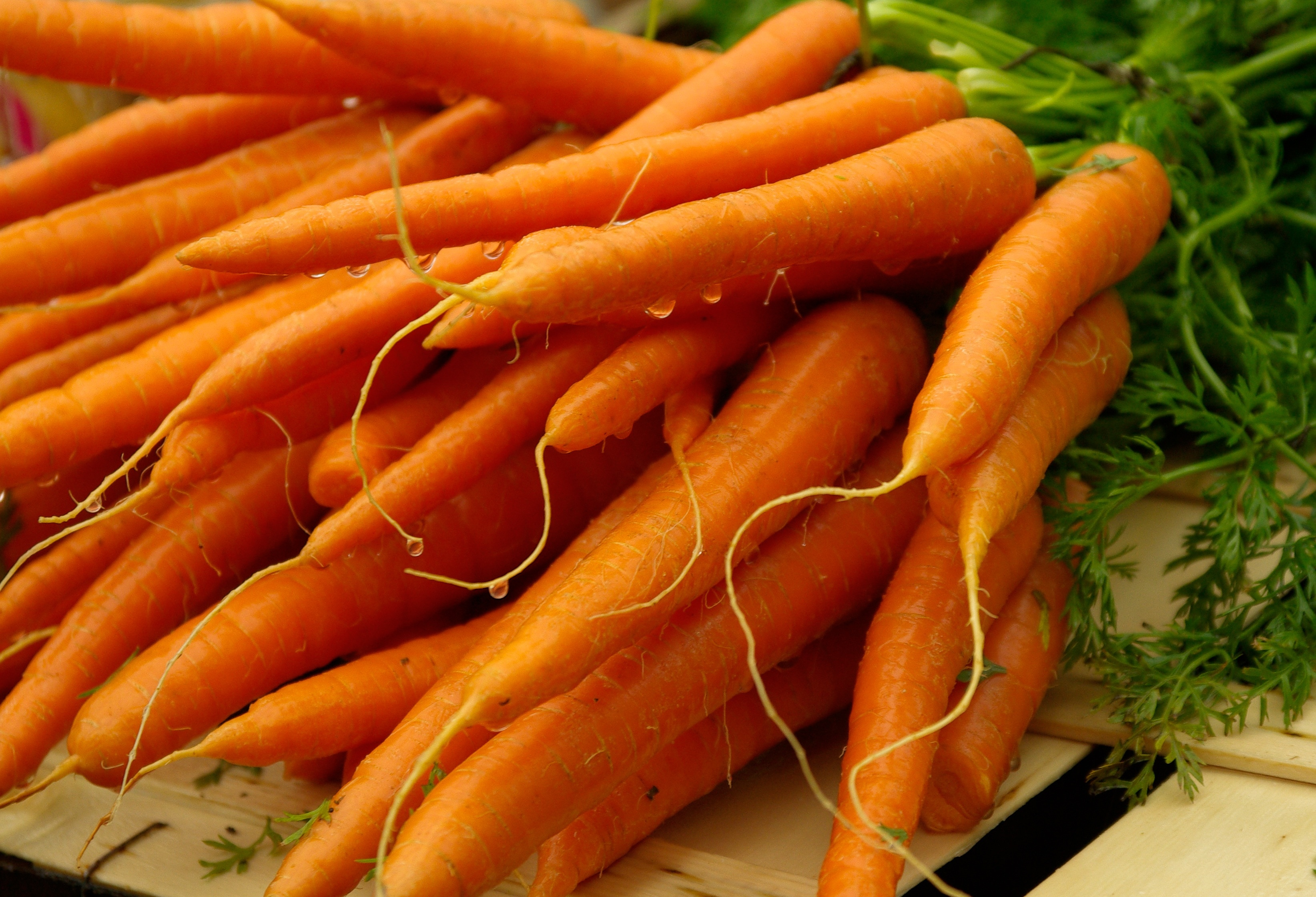 carrots up close wide wallpaper 62717