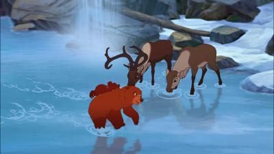 Brother Bear Desktop Wallpaper 64205