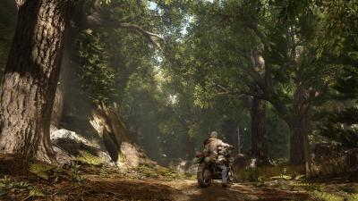 Days Gone Widescreen Wallpaper Background 62611