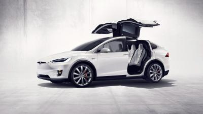 Tesla Model X Side View Wallpaper 66058