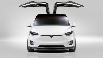 Tesla Model X Widescreen Wallpaper 66057